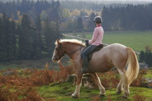 Alvie Estate Horse Riding